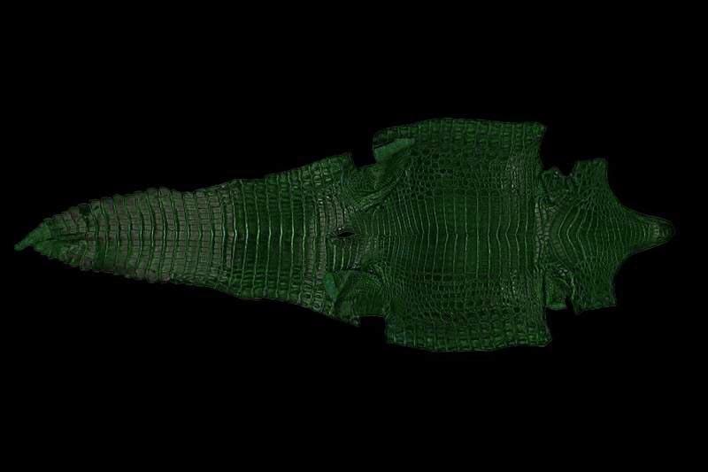 натуральная кожа крокодила черного цвета.